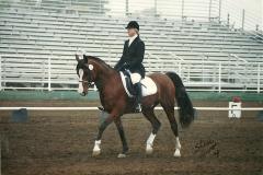 12 2 horseshow